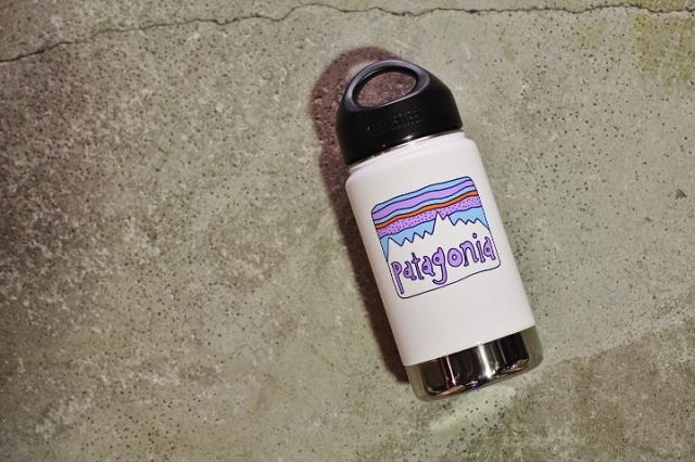 PATAGONIA Klean Kanteen Fitz Roy Bottle