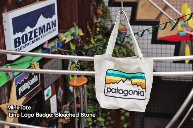 Patagonia Canvas Bag